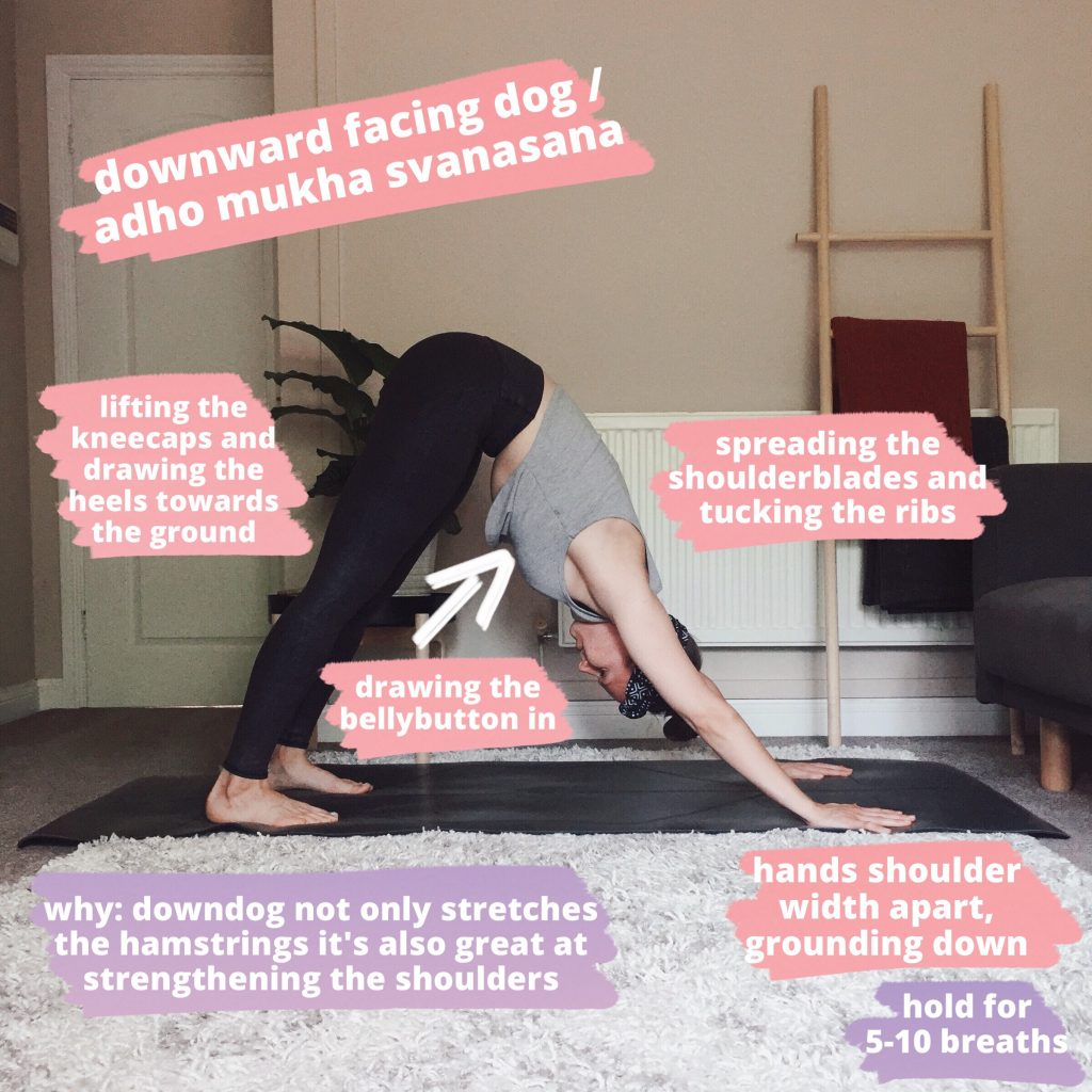 Downward-Facing Dog, a yoga pose where the weight is balanced between the hands and the feet and the hips are lifted.